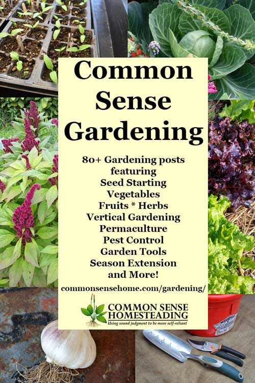 Gardening - Seed starting and transplants, growing vegetables, herbs and  fruit; permaculture;