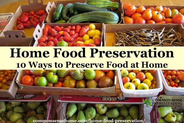 Comparison of home food preservation methods, including canning, freezing, freeze drying, dehydrating, root cellaring, lacto-fermentation and more.