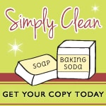 "Click Here to Purchase ""SImply Clean"" e-book"