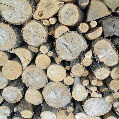 Dry, seasoned fire wood