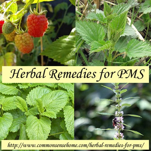 Herbal Remedies for PMS @ Common Sense Homsteading