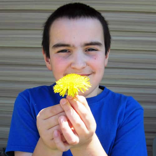 Common Dandelion - Weekly Weeder #17 @ Common Sense Home