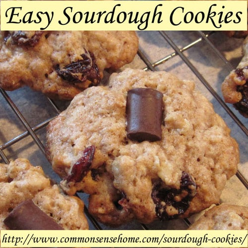 Easy Sourdough Cookies - Basic, Cherry-chocolate-oatmeal and Oatmeal-Raisin @ Common Sense Home