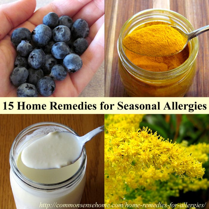 Best Seasonal Allergy Medicine
