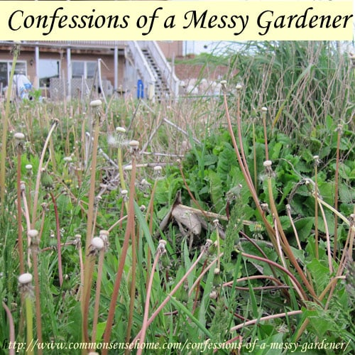 Confessions of a Messy Gardener - The editors of Better Homes and Gardens have a heart attack. Am I freaking out about this? Not really. Here's why.