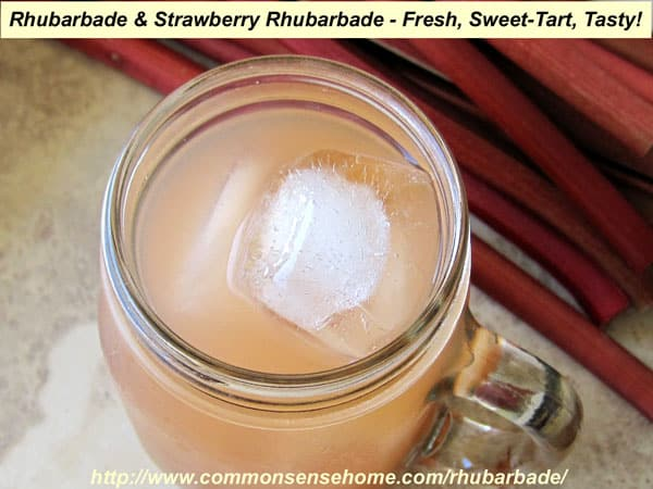 Rhubarbade and Strawberry-Rhubarbade - A Sweet-Tart Springtime Treat That You Can Sweeten with Sugar or Stevia.  Substitute fresh or frozen cherries or raspberries for a taste twist.