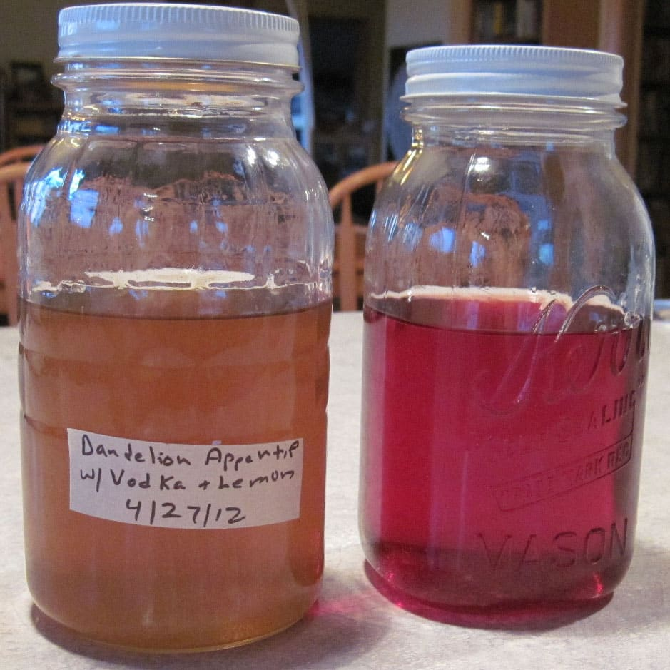 Dandelion and Lemon Infusion, Cranberry Lime Infusion @ Common Sense Homesteading