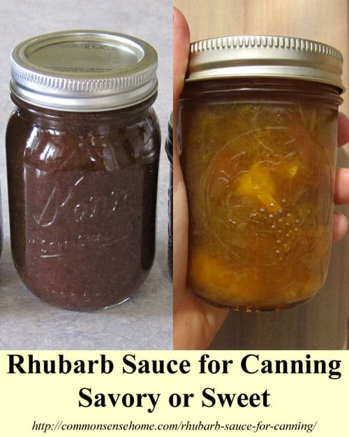 Rhubarb Sauce for Canning - Rhubarb barbeque (Rhubarb-BQ) sauce and Rhubarb-orange compote. Savory and sweet rhubarb sauce recipes.