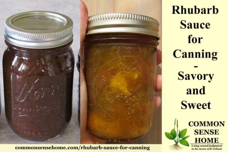 Rhubarb Sauce for Canning – New Ways to Use Your Rhubarb