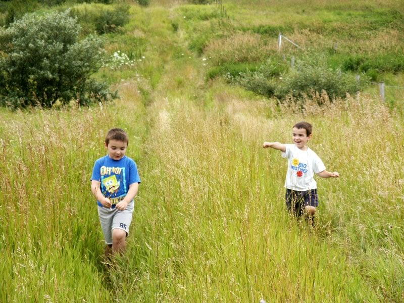Boys Building an eco home