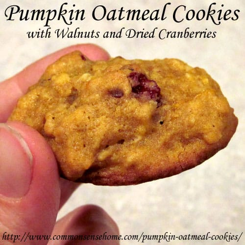 Pumpkin Oatmeal Cookies with Walnuts and Dried Cranberries - fall flavors with a hint of spice, these easy to make cookies are tender and delicious.