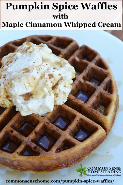 Pumpkin spice waffles pair up a favorite fall flavors, abundant pumpkin and rich whipped cream for an easy but memorable breakfast treat.