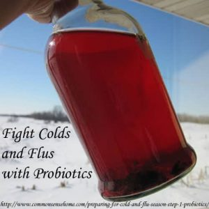 Fight Colds and Flus with Probiotics @ Common Sense Homesteading