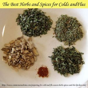 Cold and Flu Fighters - Herbs and Spices