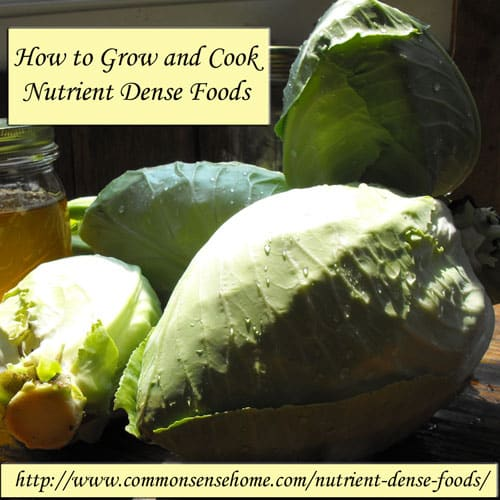 How to Grow and Cook Nutrient Dense Foods @ Common Sense Home