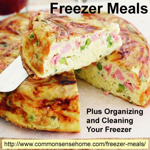 Freezer Meals Plus Organizing and Cleaning Your Freezer @ Common Sense Home