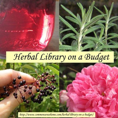 Herbal Library on a Budget @ Common Sense Homesteading