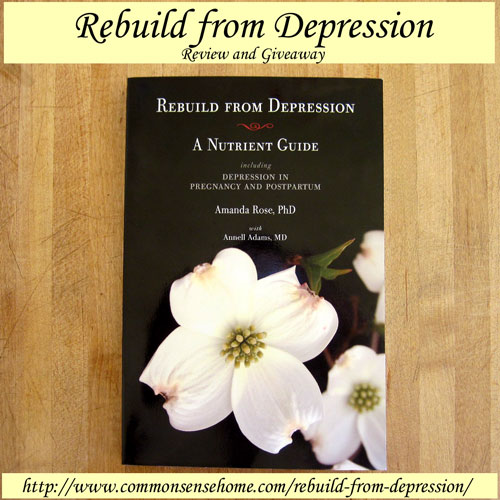 Rebuild from Depression Review and Giveaway @ Common Sense Home