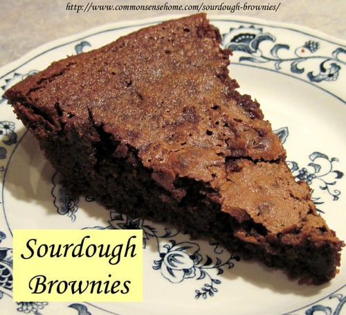 Sourdough Brownies @ Common Sense Homesteading