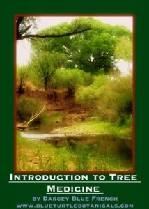 tree medicine