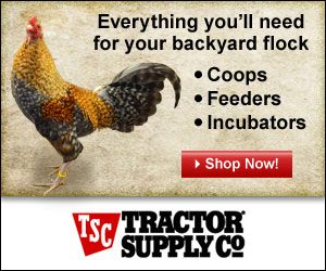 Tractor Supply Chicken Supplies