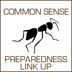 Common Sense Preparedness Link Up #1 @ Common Sense Home