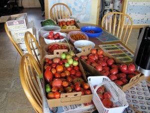 produce filled table