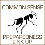 Common Sense Preparedness thumbnail