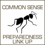 Common Sense Preparedness thumbnail