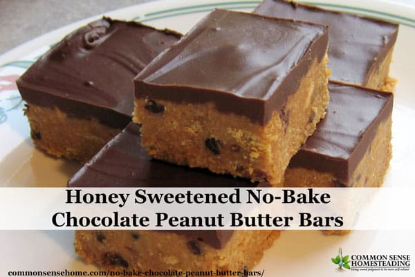 Honey Sweetened No-Bake Chocolate Peanut Butter Bars - Easy enough for the kids to make themselves for an any time treat.