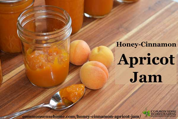 Honey-Cinnamon Apricot Jam is lightly sweetened with honey and flavored with a hint of cinnamon and citrus so you can taste the fruit, not the sugar.
