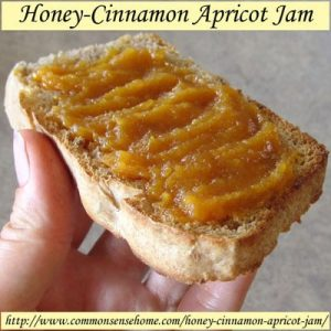 honey-cinnamon-apricot-jam