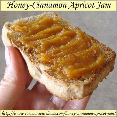 Honey-Cinnamon Apricot Jam - Low on sugar, big on flavor