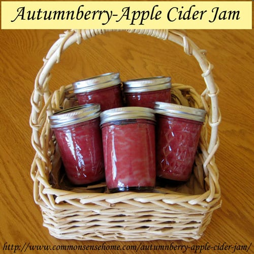 Autumnberry-Apple Cider Jam - turn this abundant wild fruit into tasty jam loaded with 18 times the lycopene of tomatoes.
