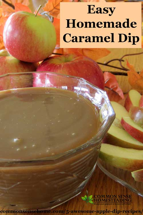 5 Awesome Apple Dip Recipes Caramel Chocolate Nuts And