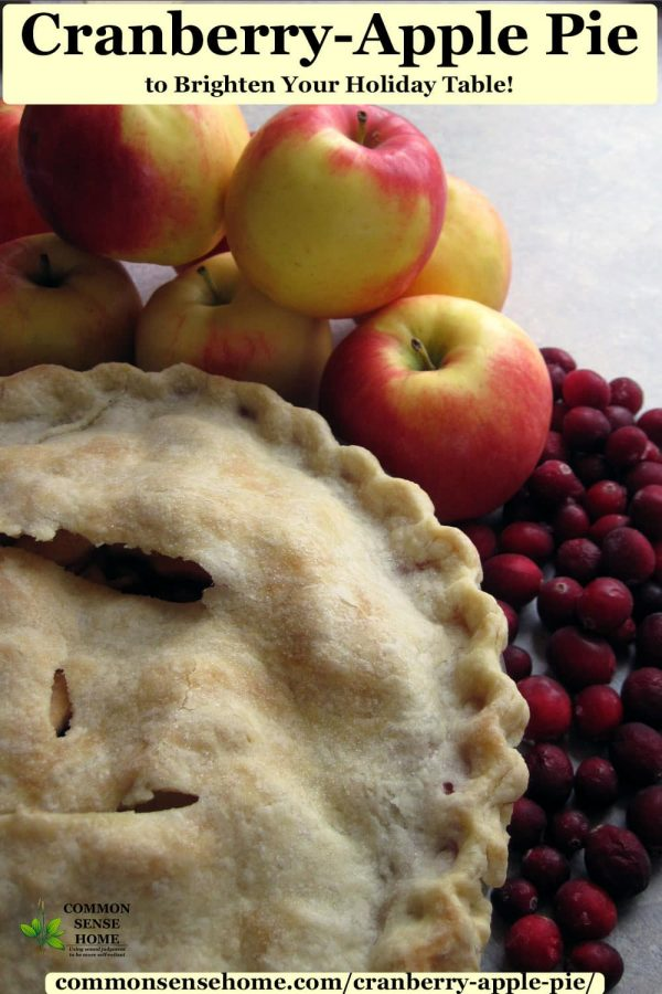 cranberry-apple pie with apples and cranberries