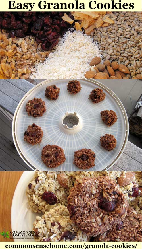 Easy No Bake Granola Cookies That You Make in the Dehydrator
