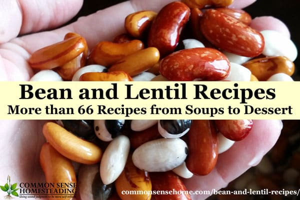 Bean and Lentil Recipes - Bean Desserts; Entrees; Side Dishes; Bean Chilis, Soups and Stews; Snacks, Dips and Appetizers with Beans, Bean Cooking Tips