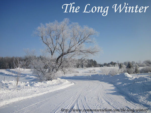The Long Winter - images from a snow covered homestead