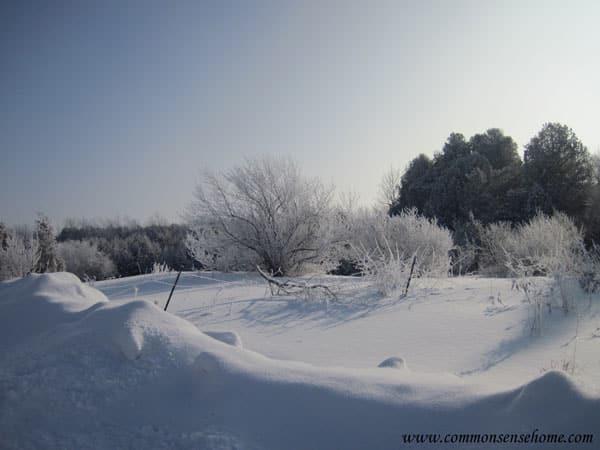 deep-winter-snow