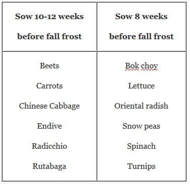 Summer Planting Schedule
