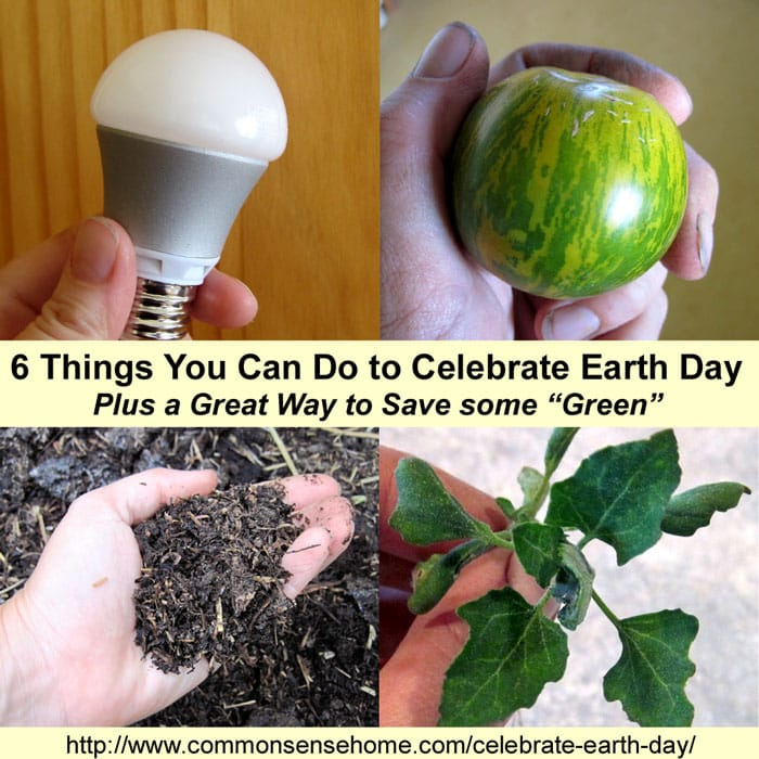 "6 Things You Can Do to Celebrate Earth Day and Save Some ""Green"""