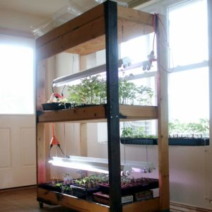 Learn how to build your own simple seed starting shelves with grow lights and room for up to 576 seedlings. Sturdy, moveable and easy enough for a weekend project.