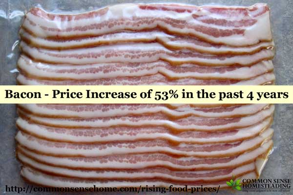 Rising Food Prices - 6 Proven Strategies to Stretch Your Food Budget - Plus Factors Involved in Rising Food Costs to Help You Plan for Price Increases