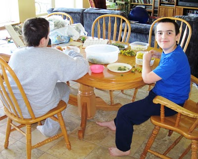 two boys sitting at a kitchen table, picking dandelion petals off of dandelion flowers