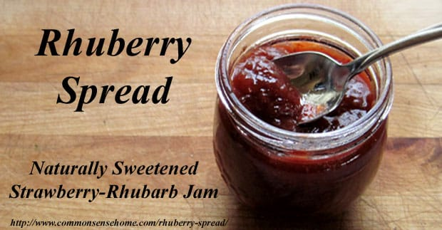 Rhuberry Spread - 4 ingredients - no added sugar or commercial pectin. Sweetened with apple juice concentrate and thickened with natural apple pectin.
