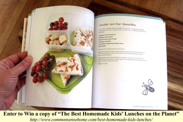 The Best Homemade Kids' Lunches on the Planet by Laura Fuentes Review and Giveaway