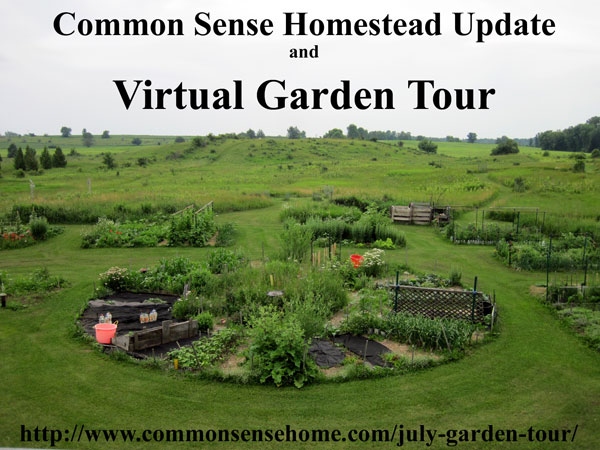 Homestead Update and July Garden Tour