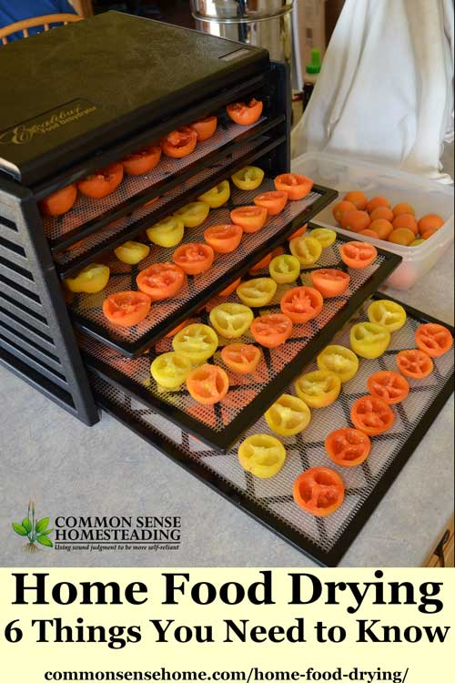Learn home food drying basics with this quick guide to food dehydrators, plus tips for food drying and safe storage. Includes printable fruit drying guide.