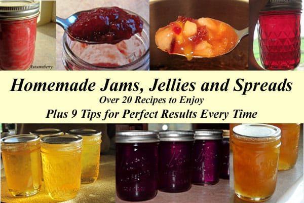 Homemade jams. jellies and spreads